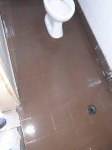 WC - почистени плочки и санитария.
