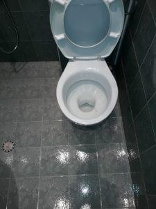 Почистена санитария.