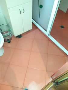 Почистини баня и санитарен възел.