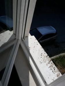 Мръсни прозорец и перваз.