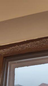 Мазилка и боя по дограма на прозорец.